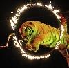 Цирки в Сафакулево