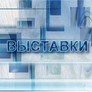 Выставки Сафакулево