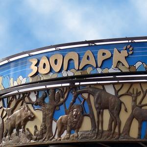 Зоопарки Сафакулево